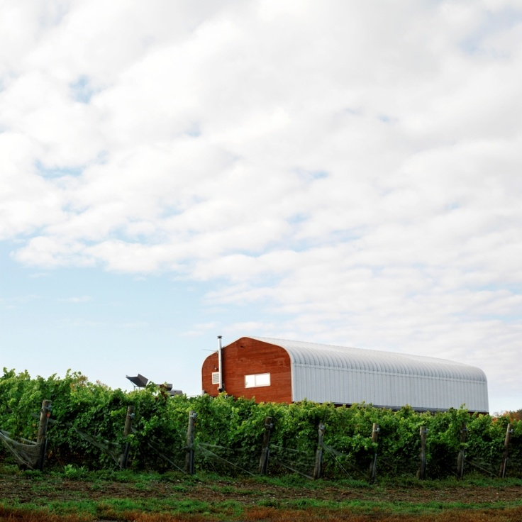 View of Norman Hardie's white roofed winery in Prince Edward County, Ontario, Canada. ©2009 Margaret Mulligan, all rights reserved