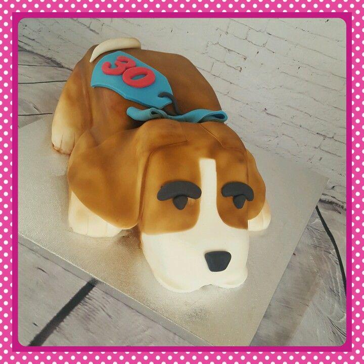 Beagle cake #beaglecake #dogcake #cakescheltenham
