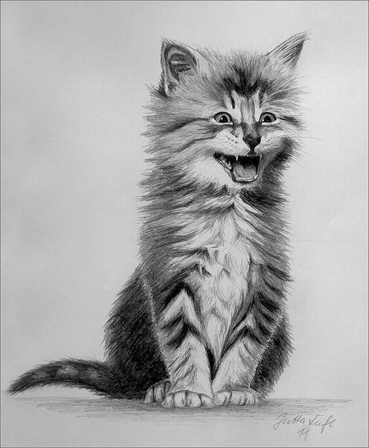 Kätzchen - Bleistiftzeichnung                                                                                                                                                     Mehr