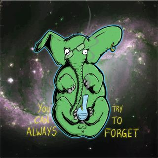 They say an elephant never forgets... • r/weed