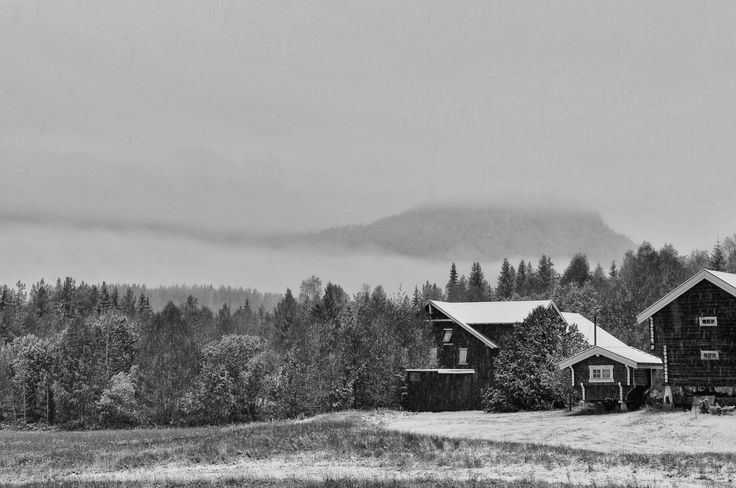 First snow by Lidia, Leszek Derda on 500px