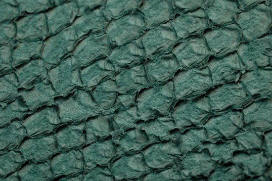Fish leather (Perch sea green - 547 matt finish)