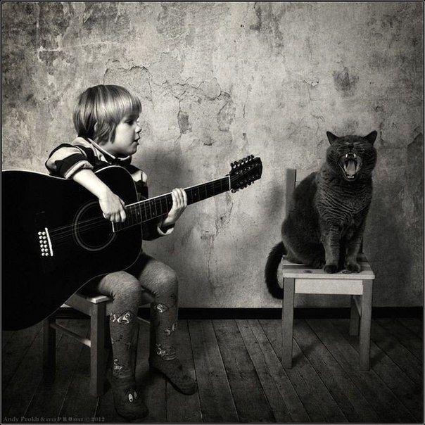 Человек культурен настолько, насколько он способен понять кошку.   Бернард Шоу