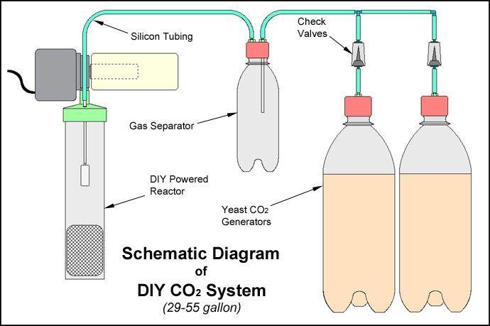 DIY CO2 System for Planted Aquarium