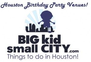 Birthday Parties 300x206 Birthday Party Venues in Houston   Where to have your Kids Next Birthday Party!