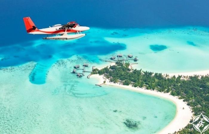 يلا غو تسهل حجز الإقامة والمواصلات في جزر المالديف In 2020 Visit Maldives Maldives Travel Maldives Island