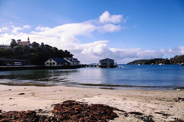 The Deep South: Stewart Island   www.asherworldturns.com