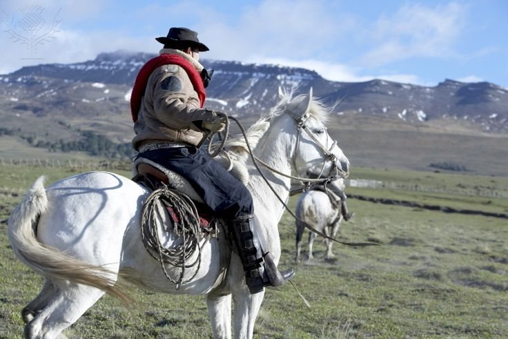A gaucho riding his horse, Torres del Paine National Park,...