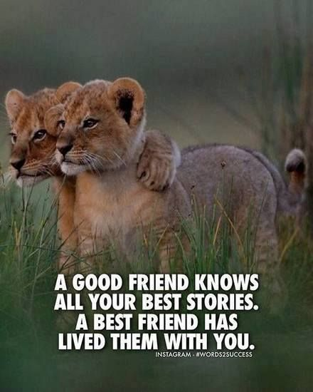 A good friend knows all your best stories..