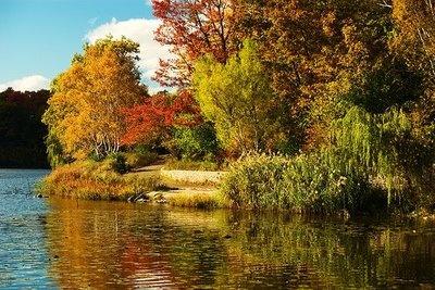 Grenadier Pond in High Park