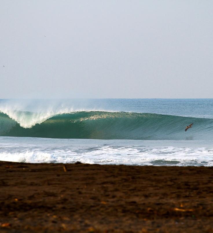 #surfing #pawasurf #pawa #surf #perfectwave #favoriteplace #lineup #wave #perfecttube #perfectbarrel #surftrip #emptylineup