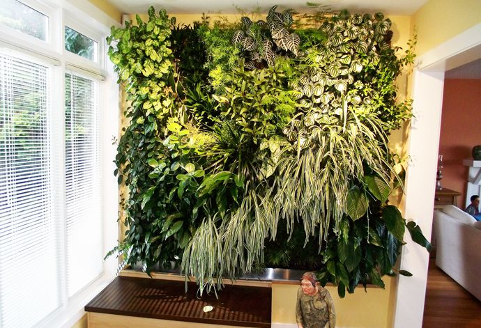 17 best images about hydroponics and aquaponiccs on pinterest gardens vertical hydroponics. Black Bedroom Furniture Sets. Home Design Ideas