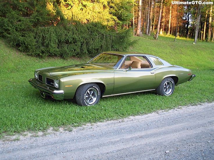 42 best Pontiac GTO 1973 images on Pinterest  Goats Bodies and