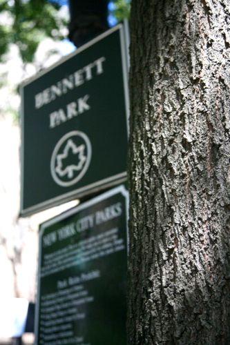 Park Portfolio - Bennett Park