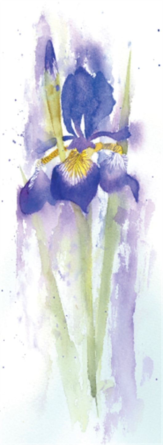 How to Paint an Iris in Watercolour with Rachel McNaughton, step by step tutorial