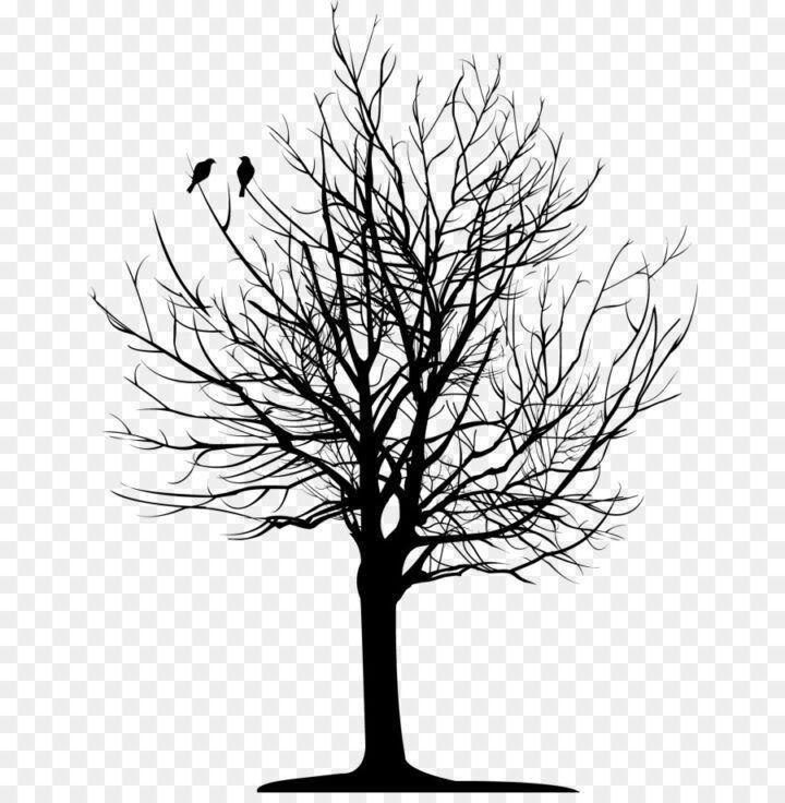 Tattoo Tree Drawing Bird Branch Dark Tree Png Vector Clipart Psd Peoplepng Bird Bird Branch Clipart Dark Drawing Tree Drawing Bird Drawings Dark Tree