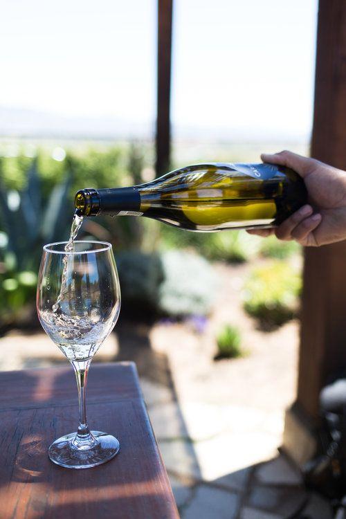 Salt & Wind Travel: Baja California Wine Tasting Photo by Joanne Pio