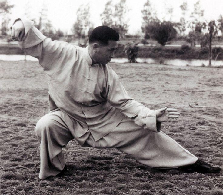 Yang Style Tai Chi Chuan,   Snake Creeps Down, Single Whip Lower Posture,   Grand Master Tung Hu Ling
