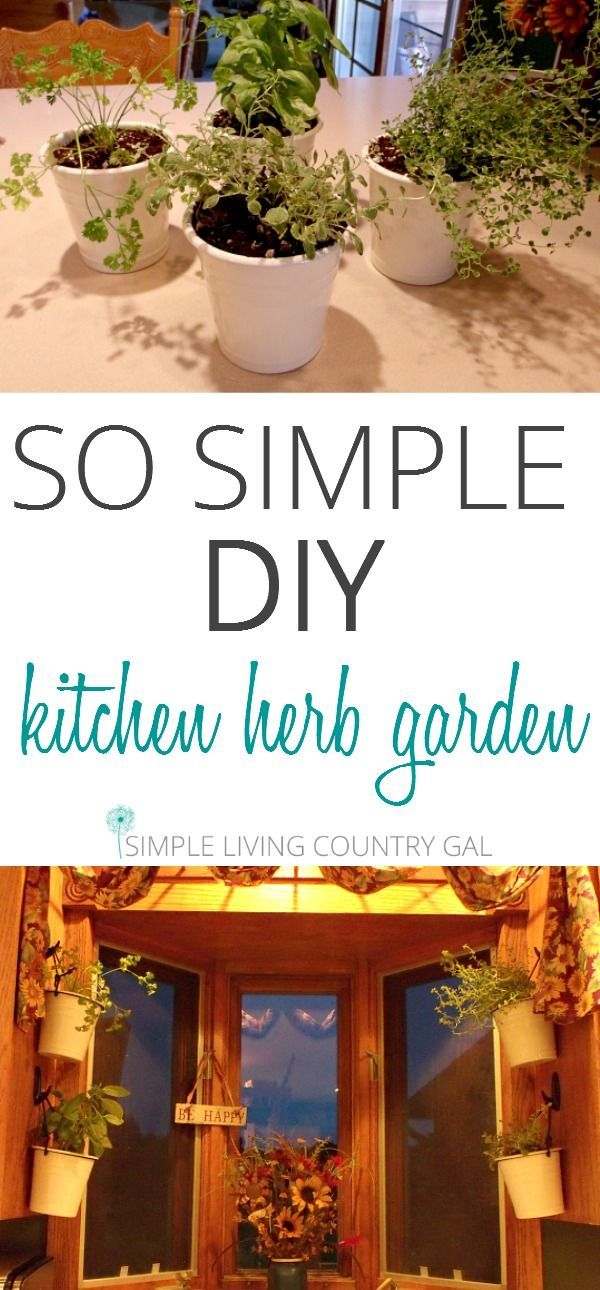 6644 best images about Gardening on Pinterest Gardening