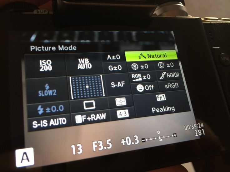 Olympus Monotone picture mode in the OM-D and PEN system cameras
