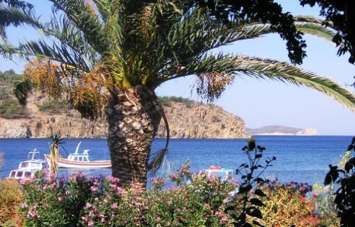 Meloi beach, #Patmos. The long and narrow crescent of golden sand shelves into crystalline waters perfect for swimming and snorkelling.