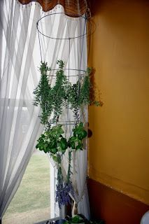 Herb Drying Rack with a Tomato Cage