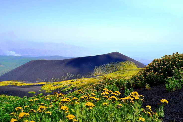 Il contrasto tra il giallo e il nero sulla cima dell'Etna. #Sicily, #Sicilia