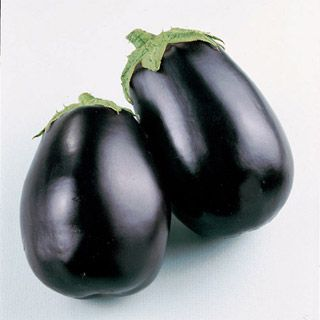 One of America's favorite Eggplants is now available in Certified Organic seed form!