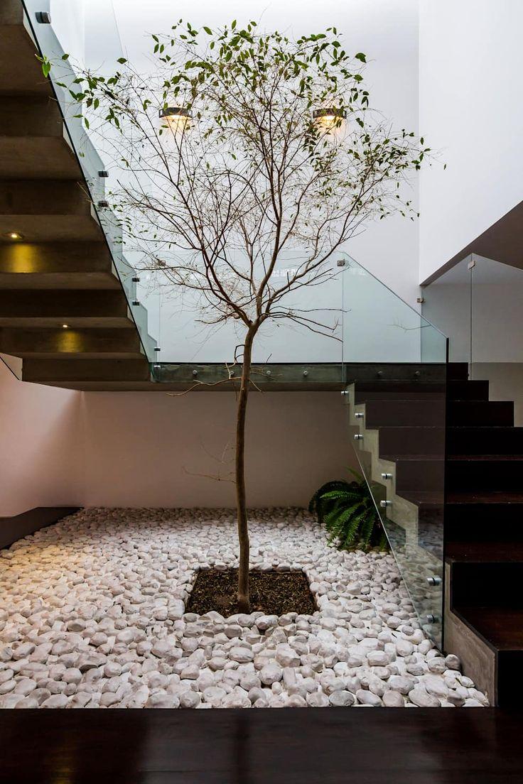 Arbol: Pasillo, hall y escaleras de estilo  por aaestudio
