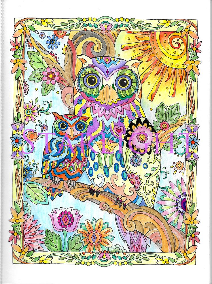 coloring book pages adult coloring colouring bird houses colored pencils color theory jigsaw puzzles folk coloring book chance