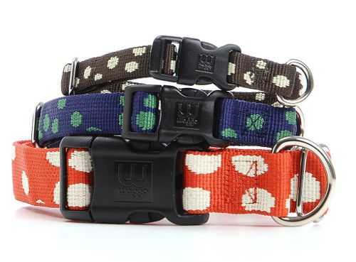 New from Waggo: Modern Dog Bowls, Collars, and Toys