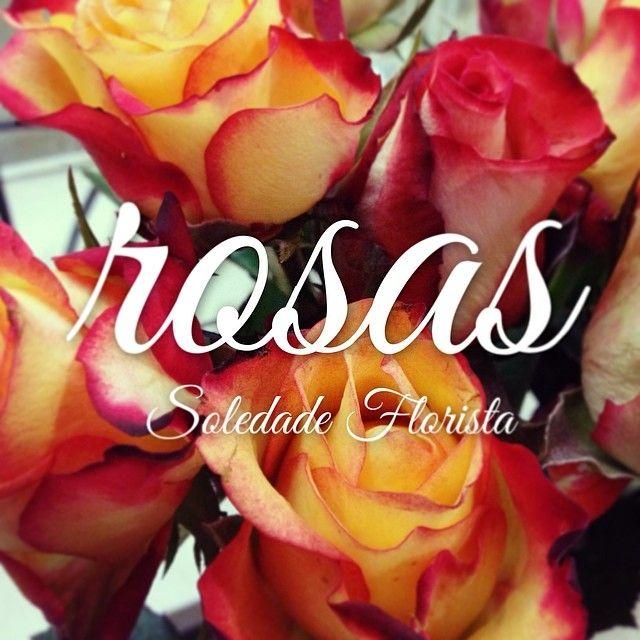 Quem não se deixa encantar por umas rosas! Nós adoramos! #soledadeflorista #rosas #flores #flowers #portugal