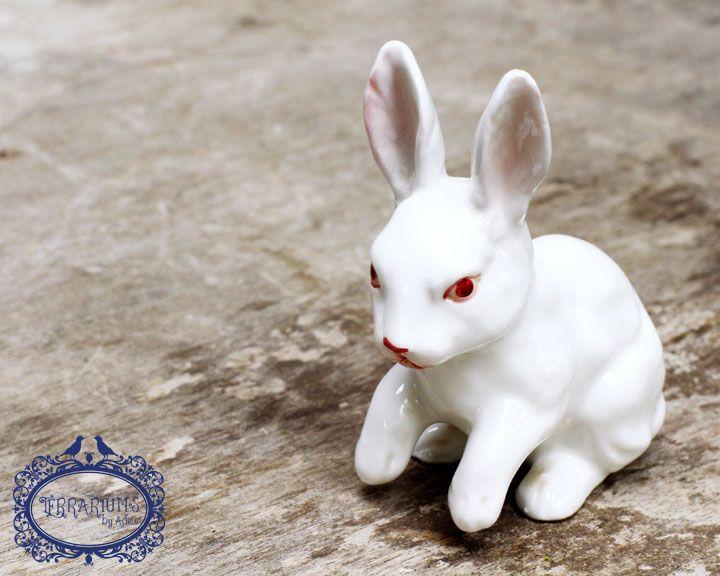 Terrarium accessory, white porcelain rabbit. Follow Terrariums by Adele on Facebook.