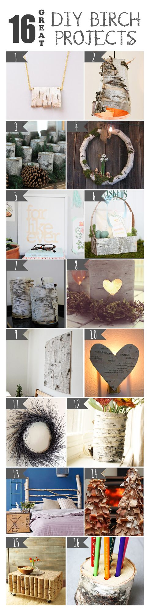 16 DIY Birch Projects
