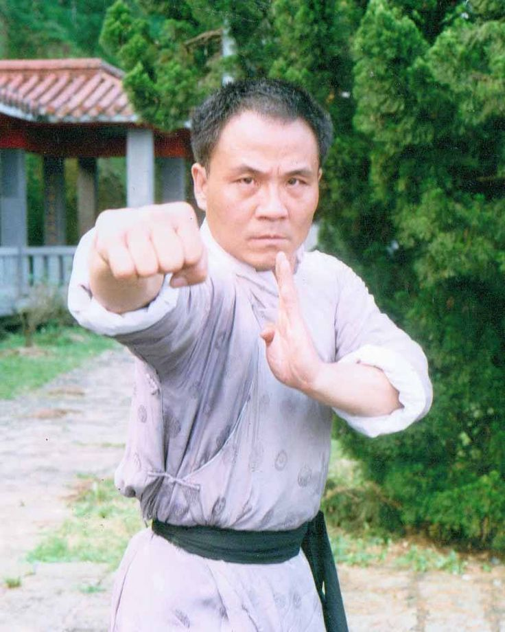 """The legendary Lu Feng (the bad guy in 99% of Venoms films and the Centipede in """"Five Deadly Venoms"""") in the bizarrely conceived film, """"Fist of Legend 2: Iron Bodyguards""""."""