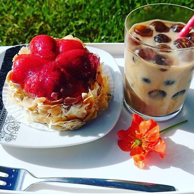 Good morning  breakfast time  is Coffee time  мой сегодняшний ПП завтрак на свежем воздухе  с овсяночкой, творожком и клубникой ну, и без кофеина никак ☕ рецепт  #breakfast #haveaniceday #photooftheday #instafit #instafood #vscomoment #vscostyle #vscofood #vsco #instalike #instadaily #sweet #foodporn #food #пп #жж #зож #жиросжигание #худеемвместе #худею #кушаю #кушаемправильно #дневникпитания #яхудею #мирдолжензнатьчтояем #похудение #стройность