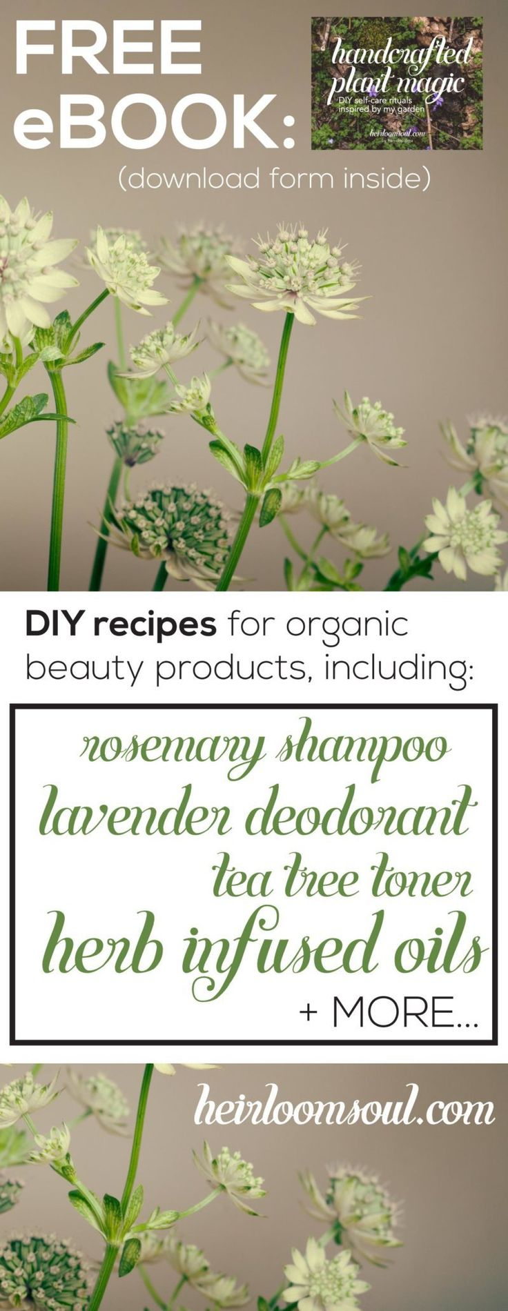 """FREE ebook! """"Handcrafted Plant Magic"""" - Easy DIY bath & beauty product recipes that are completely natural and organic - banish toxins from your daily routine for good! - Handcrafted Plant Magic - DIY Self-Care Rituals Inspired by My Garden - Free Ebook!   Heirloomsoul.com"""