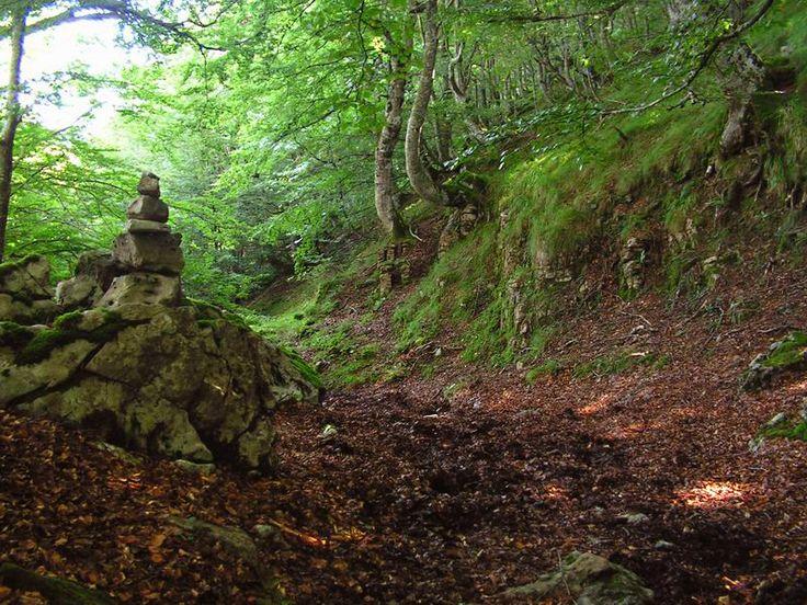 Senderos del Valle de Lunada, Cantabria http://alberguealtomiera.wordpress.com/ http://www.facebook.com/agroturismoaltomiera +34 616245761 #hosting #travel #spain #albergue #cantabria