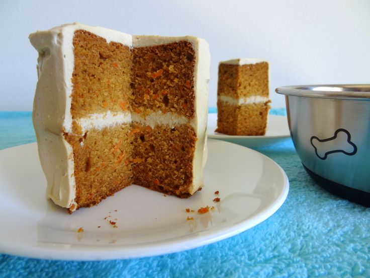 Peanut Butter Carrot Cake for Dogs | Put On Your Cake Pants