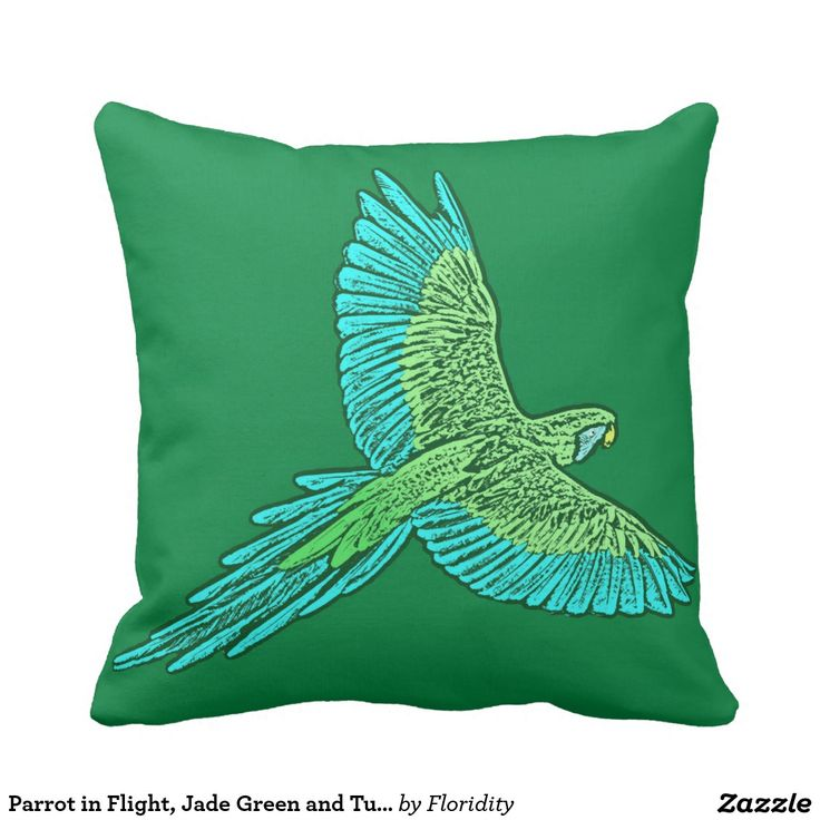 Throw Pillow Color Combinations : 1000+ ideas about Turquoise Throw Pillows on Pinterest Chocolate Brown Couch, Room Color ...