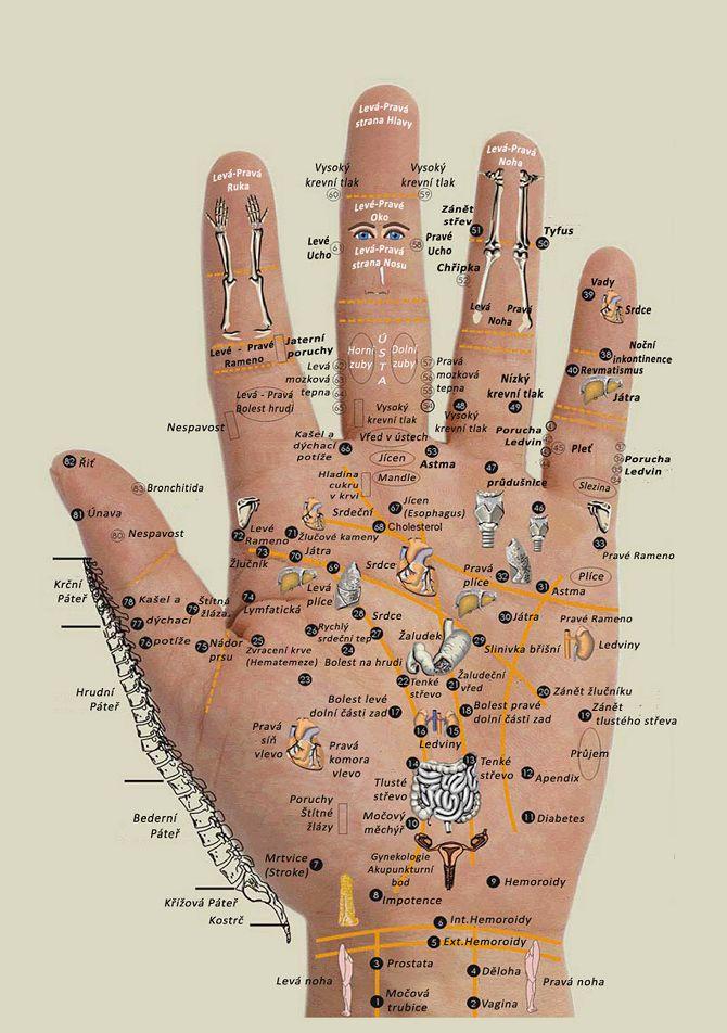 | Jan Vaš | LéčitelReflexní terapie rukou