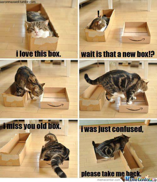 KITTY'S BOX