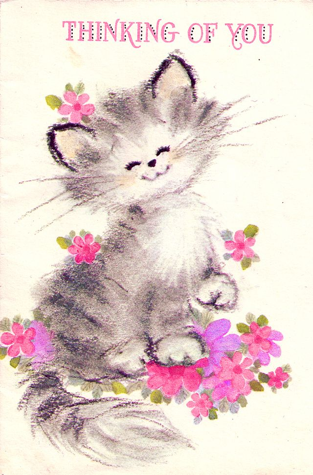 "Thinking Of You | ""Oh, pardon meow"" | Pinterest"