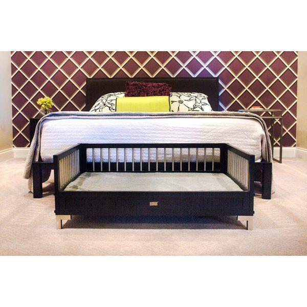Dustin Ecoflex Dog Sofa Dog Beds Dog Bed Bed Dogs