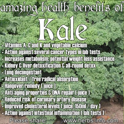 ❤ The Amazing Health Benefits Of Kale (please share!) ❤