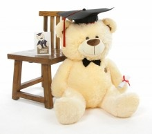 This 35 in. BooBoo G Shags Vanilla Graduation Teddy Bear with Cap and Diploma is sure to impress any graduate!