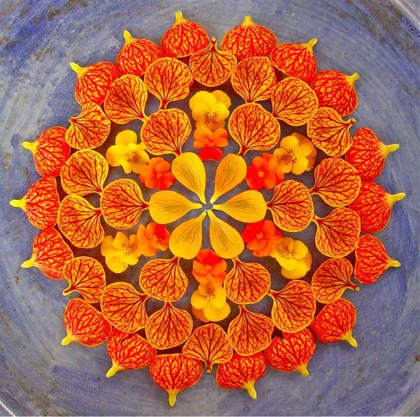 natural mandalas by Arizona artist Kathy Klein. The pieces are called danmalas ('the giver of garlands' in Sanskrit), and after each is formed and photographed Klein leaves them where they were created as a gift to whoever discovers them.: Flowers Garlands, Gorgeous Flowers, Flowers Mandala, The Giver, Color, Mandala De, Beautiful Flowers, Kathy Small, Flowermandala
