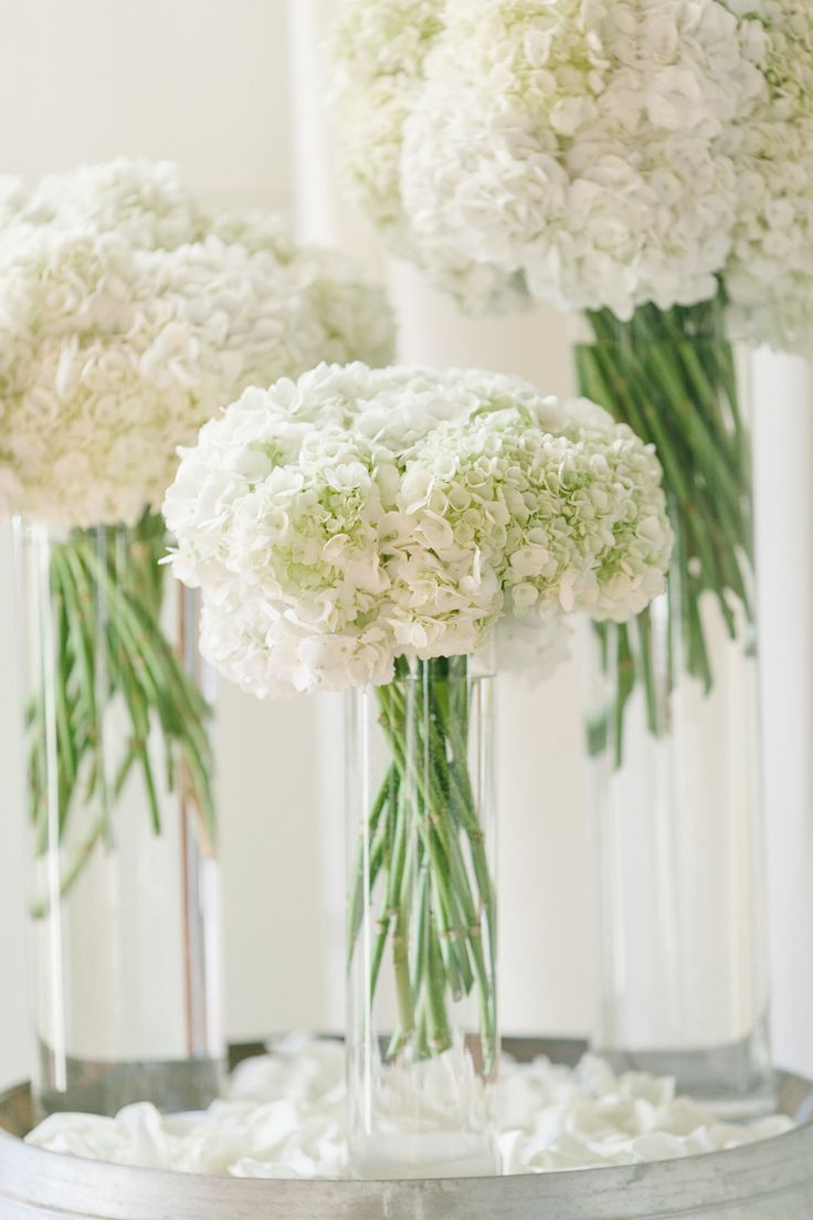 all white wedding flowers  white hydrangeas , reception, wine barrel, cylinder vase, hydrangea http://sophisticatedfloral.com/  Photo by Maria Lamb