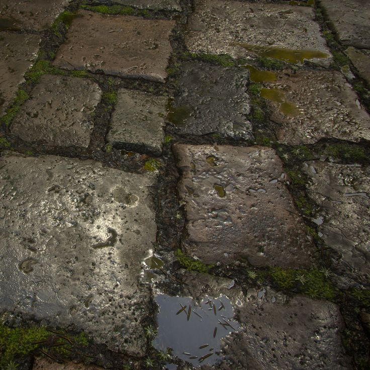 Wet Stone Floor - 100% Substance Designer, Robert Wilinski on ArtStation at https://www.artstation.com/artwork/JZ0PA