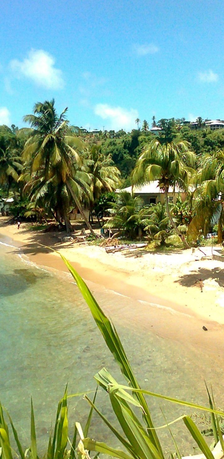 Roseau Dominica It S Not Called The Nature Island Of The Caribbean For No Reason This Spectacular Beaches In The World Caribbean Travel Beautiful Beaches